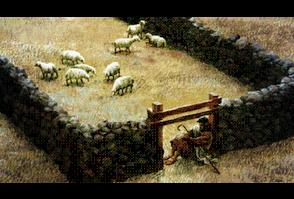 Sheep Gate Reflectgrace